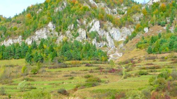 Haligowskie Skały – rezerwat