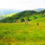 Widok na polanę na Palenicy - ludzie wspinają się pod górę szlak na Wysoką