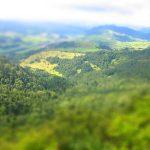 Widok z góry Wysokiej - widok na Trzy Korony w oddali