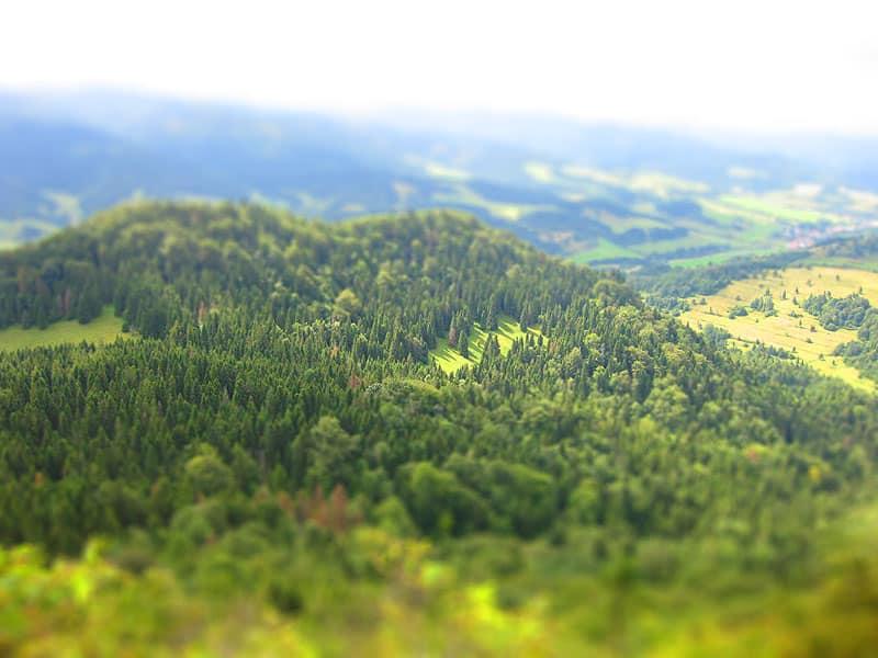 Widok z góry Wysokiej - najwyższy szczyt Pienin