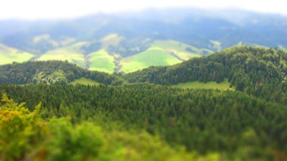Rezerwat Wysokie Skałki