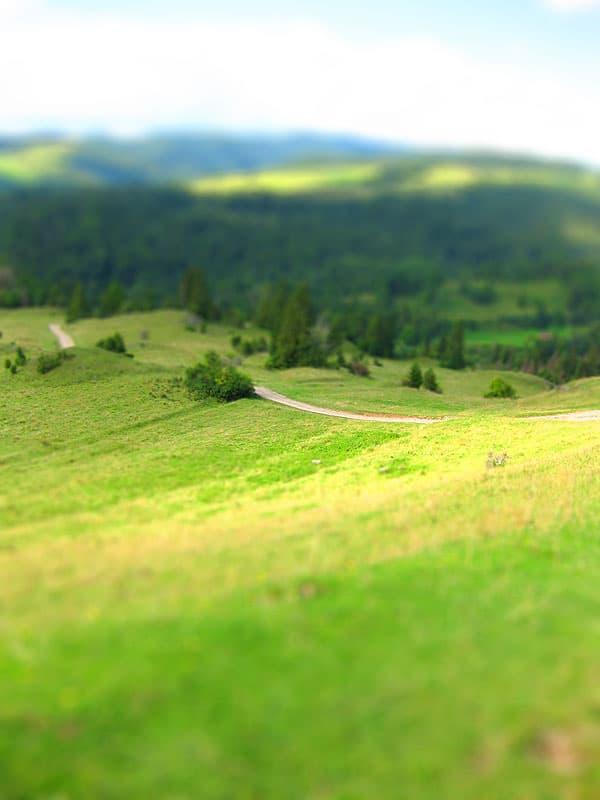 Szlak z Palenicy na wysoką - zielone wzgórza