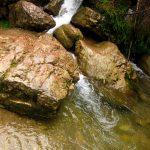 Kaskady na Potoku Kamionka w Wąwozie Homole