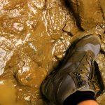 Scieżka Wąwozem Homole, przy strumieniu
