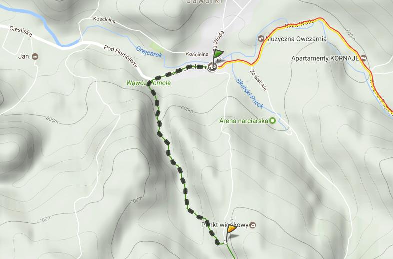 Szlak zielony turystyczny do Wąwozu Homole