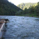 Spływ spokojnymi wodami Dunajca