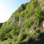 strome zbocza gór pienin nad Dunajcem