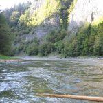 Widok na Przełom Dunajca