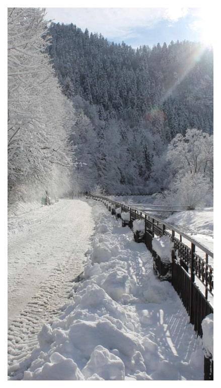 Pieniny zimą - zasniezona droga na szlaku turystycznym