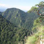 Widok ze szczytu Sokolicy na Pieniny