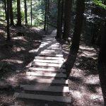 szlakl na sokolicę - drewniane schody na szlaku