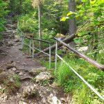 na szlaku przez wąwóz homole ułatwienia dla spacerowiczów dzięki poręczom i schodom
