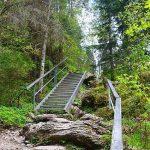 szlak przez wąwóz Homole - poręcze i schodki, drabinki, trasa dobrze przygotowana dla turystów