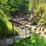 wąwóz Homole szlakiem przez kładki metalowe, pomosty dla turystów