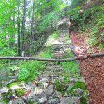 ruiny zamku pieniny - nie chodzic po uinach