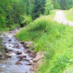 rezerwat biała woda na szlaku 2