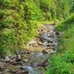 rezerwat biala woda kaskady na potoku