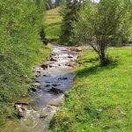 rezerwat biala woda potok