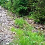 rezerwat Zaskalskie Bodnarówka - droga szlak