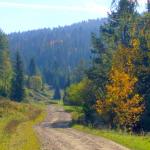 rezerwat Zaskalskie Bodnarówka - szlak przez rezerwat