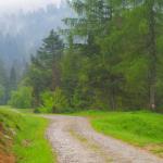rezerwat Zaskalskie Bodnarówka - w drodze